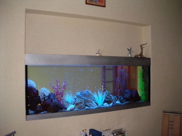 Как в стене сделать аквариум