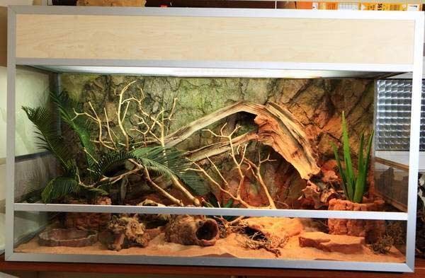 Террариум для змей: интерьер с ползучими питомцами | Дизайн интерьера