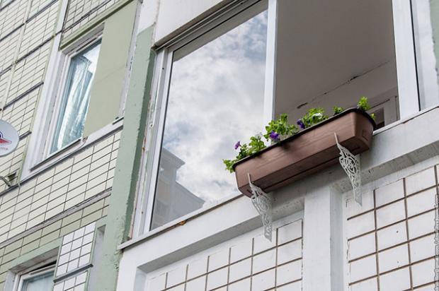 Комнатные растения, кашпо и кронштейн для кашпо дизайн интер.