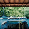 Отели посреди джунглей: 2 варианта отдыха среди экзотики