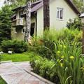 Дом Алены Апиной: галька за высоким забором