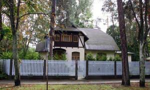 Дом Михаила Задорнова под Юрмалой в лапах злющего кота