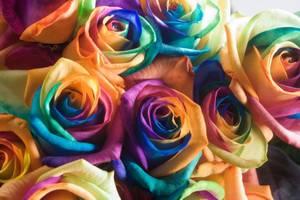 Искусственные цветы из ткани: красим правильно бутоны