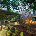 Творческий проект деревни с домами-цилиндрами